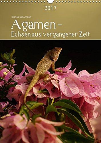 Agamen - Echsen aus vergangener ZeitAT-Version (Wandkalender 2017 DIN A3 hoch): Aufnahmen kleiner Echsen in ihrem natürlichem Lebensraum (Planer, 14 Seiten) por Bianca Schumann