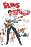 Spinout - Sag niemals ja