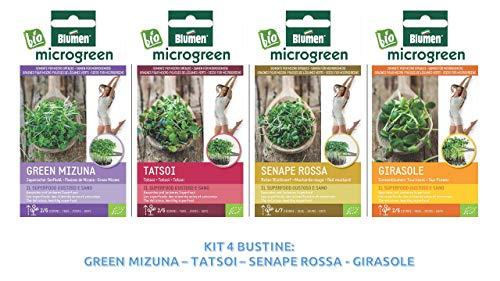 germogliatore ciotola in vetro di piantine fai da te germinatore per coltivare sementi di micro ortaggi|assortimento di sementi di micro ortaggi bio (green mizuna-tatsoi-senape rossa-girasoli)
