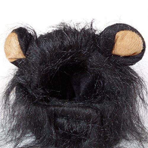 Löwe Cosplay Perücke Löwen-Kostüm Katze Hut Neuheit Löwenmähne Kopfbedeckung mit Ohren für Karneval, Halloween, Partys, Feste Haustier Spielzeug Zubehör für Kleine Hunde Welpen (Schwarz)
