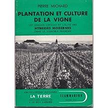 Plantation et culture de la vigne