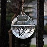 f-eshion zum Aufhängen, Pflanze Flower Vase Glas Kugel Teelichthalter klar Dia. 10cm, Transparent 1, style 2