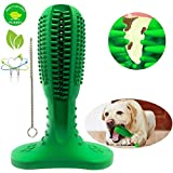 Focuses Dog Toothbrush Toy, Natural Rubber Chew Dog Toothbrush Stick for Medium Large Breed Pet Dog 360 Degree Teeth Cleaning, Oral Care Toys.