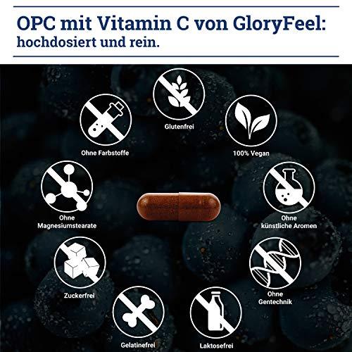 GloryFeel® OPC Traubenkernextrakt 360 Kapseln – 1.000mg Reines OPC aus Original französische Weintrauben pro Tagesdosis – Laborgeprüft, Vegan und Hergestellt in Deutschland