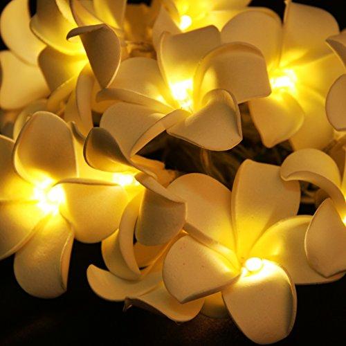 Sharplace Guirlandes Lumineuses de Fleurs à 20LEDs Décoration pour Jardin Guinguette en Noël