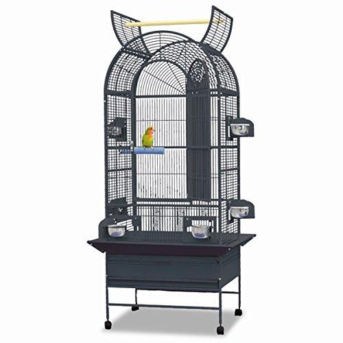 Preisvergleich Produktbild Montana Cages – Birdcage,  Käfig von Perico,  Käfig PINZONES,  Kanarischen Inseln und Heirloom Garden Boston – Antik SCHÖNE Sala Volière