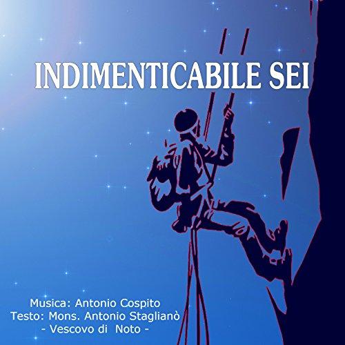 Indimenticabile sei (Radio Edit)