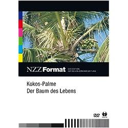 Kokos-Palme: Der Baum des Lebens - NZZ Format
