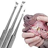 Schecker Zahnsteinentferner Set für Hunde und Katzen 3 teiliges Zahnreiniger Set mit Zahnsteinkratzer für den Hund oder Katze