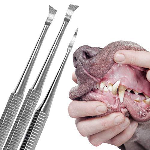 Schecker Zahnsteinentferner Set für Hunde und Katzen 3 teiliges Zahnreiniger Set mit Zahnsteinkratzer für den Hund oder Katze -
