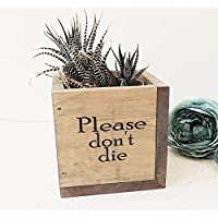 wooden planter, wood plant pot, rustic decor, fun gift, new home present, square planter, please don't die, indoor gardening, kitchen pot