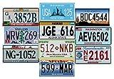 - Lotto di 10 targhe USA per la Registrazione dei Metalli per Auto - repliche di Vere targhe Americane