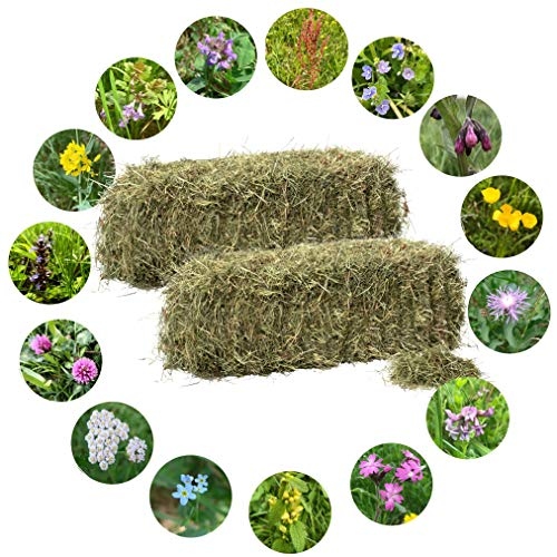 Jumbogras® Bio-Heuballen: Qualitäts-Kleintier-Futter, Heu für Kaninchen/Hasen und Nager aus dem österreichischen Alpenvorland (2 x Heuballen 16-20 kg, 1. Schnitt)
