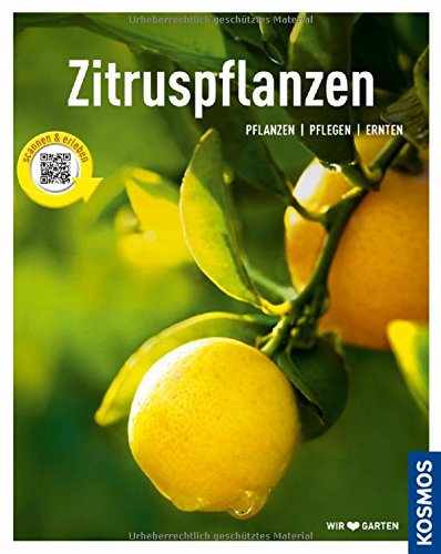 zitruspflanzen-gestalten-pflanzen-ernten-mein-garten