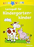 Lernspaß für Kindergartenkinder: Rätseln, spielen, lernen! (LERNSTERN)