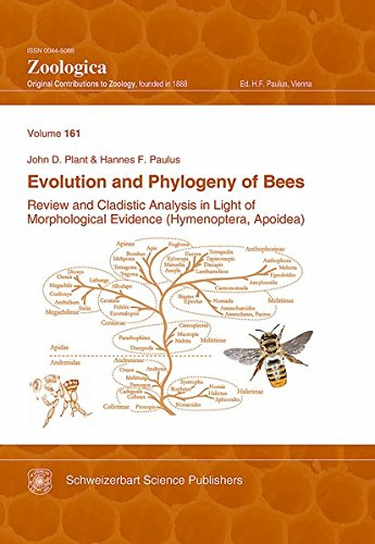 Evolution and Phylogeny of Bees: Review and Cladistic Analysis in Light of Morphological Evidence ( Hymenoptera, Apoidea) (Zoologica)