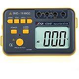 Victor Vc60d + Digital Isolation testeur de résistance Mètre 2500V tension Test
