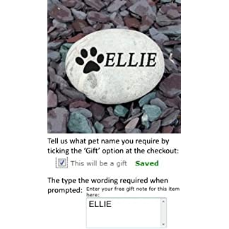Signs & Numbers Pet Memorial Pebble SMALL 10