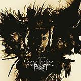Celtic Frost: Monotheist [Gatefold] [Vinyl LP] (Vinyl)