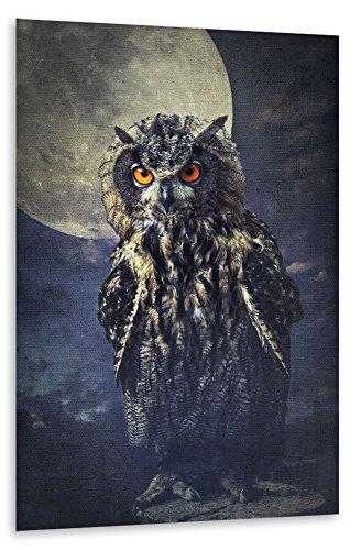 poster-photo-150x100-cm-animaux-hibou-dans-le-clair-de-lune-braun-semi-lustr-premium-photo-paper-mur