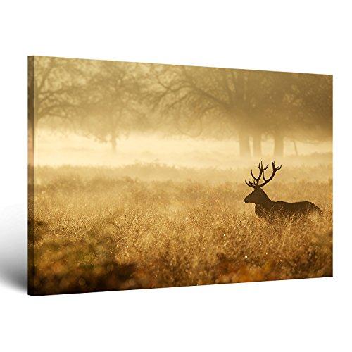 -sensationspreis-ge-bildetr-leinwandbild-zum-angebotspreis-fast-kostenlos-naturbilder-landschaftsbil