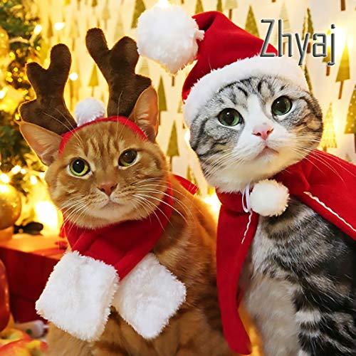 Zhyaj Hund Katze Caps Nette Pet Santa Hut Geburtstag Schal und Kragen Set Weihnachten Kostüm für Welpen Kätzchen Kleine Katzen Hunde Haustiere - Weihnachtsmann Set Perücke Kostüm
