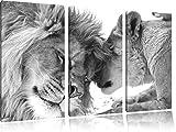Bezauberndes kuschelndes Löwenpaar schwarz/weiß 3-Teiler Leinwandbild 120x80 Bild auf Leinwand, XXL riesige Bilder fertig gerahmt mit Keilrahmen, Kunstdruck auf Wandbild mit Rahmen, günstiger als Gemälde oder Ölbild, kein Poster oder Plakat
