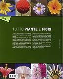 Image de Tutto piante e fiori: 1