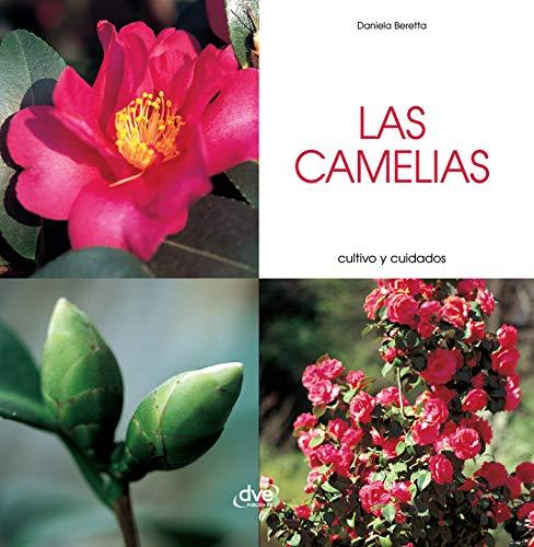 Las camelias - Cultivo y cuidados por Daniela Beretta