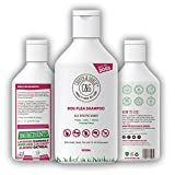 Flea Shampoo For Dogs - Sensitive Itchy Skin Dog and Puppy Grooming