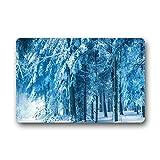 DOUBEE Neu Mode Design Schnee Winter Fussmatte Schmutzmatte Haus Fußabstreifer 46cm X 76cm