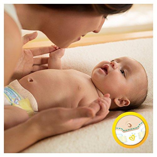 Pampers Windeln New Baby Gr.0 Micro 1-2,5 kg, 6er Pack (6 x 24 Stück) - 4