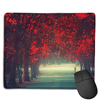 keiwiornb Mouse Pad Red Maple Leaves Avenue Art Rectangle Rubber Mousepad 8.66 X 7.09 Inch Gaming Mouse Pad with Black Lock Edge