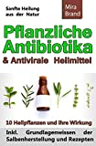 Pflanzliche Antibiotika & Antivirale Heilmittel: Sanfte Heilung aus der Natur (Inkl. Grundlagenwissen der Salbenherstellung und Rezepten) -
