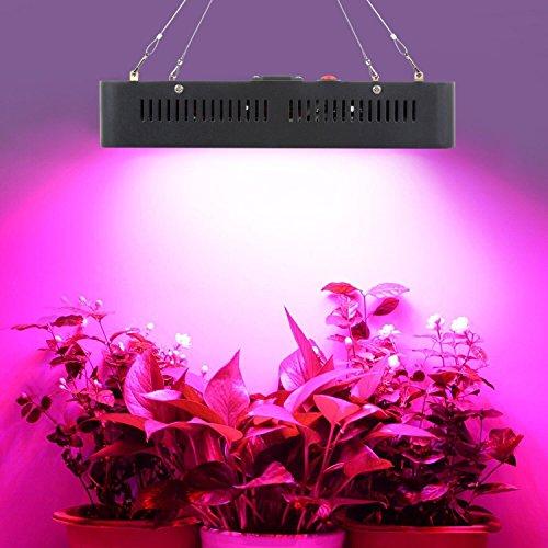 led-grow-lampe-2000w-schwarz-dual-chips-ganze-spektrum-pflanzenlampe-wachsen-lampe-fur-indoor-hydrop