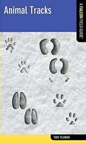 Animal Tracks: A Falcon Field Guide (Falcon Field Guide Series) by Todd Telander (2012-06-05)