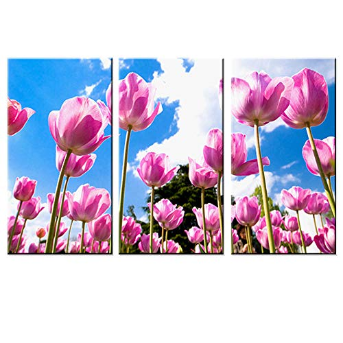 jjshily Tulpe Blume Malerei auf Leinwand Wandkunst Aufkleber Landschaft Modern Home Decoration für Rom Wall Decor 3 Panel No Frame -