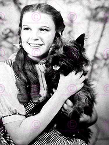 MOVIE FILM CHARACTERS DOROTHY TOTO WIZARD OZ GARLAND JUDY 18X24'' PLAKAT POSTER ART PRINT (Oz Of Toto Wizard)