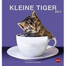 Katzen. Kleine Tiger 2017. Postkartenkalender