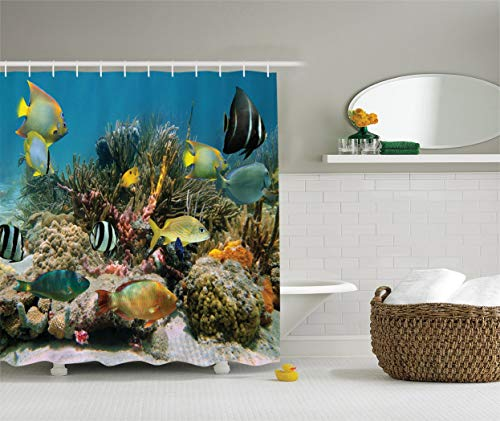 Colección Ocean Decor