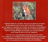 Image de Ecureuils roux