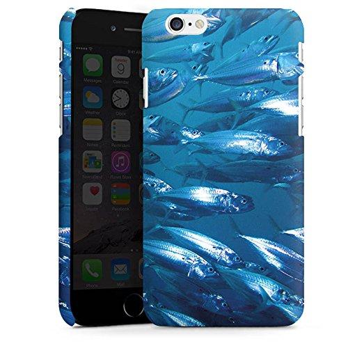 Apple iPhone X Silikon Hülle Case Schutzhülle Fisch Fische Fischschwarm Premium Case matt