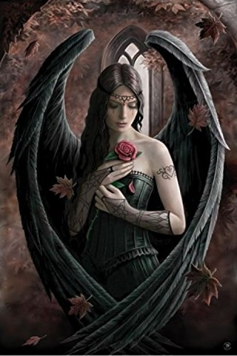 1art1 48892 Gothic - Angel Rose By Anne Stokes Poster (91 x 61 cm)
