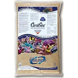 Carib Sea Arag-Alive 20-Pound Special Grade Reef Sand, Bahamas Oolite 8