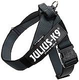 JULIUS-K9, 16502-IDC-15, Color&Gray IDC-Gurtbandgeschirr, Größe 2, schwarz-grau