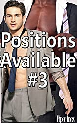 Positions Available #3 (Gay, Str8, Curious, MMf) (English Edition)