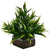 #2: Thefancymart Artificial Bamboo leaves plant (size 7.5 inchs/ 20 cms) with wood Hexagun pot-0235-888