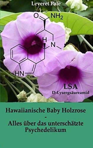 Hawaiianische Baby Holzrose: Alles über das unterschätzte Psychedelikum -
