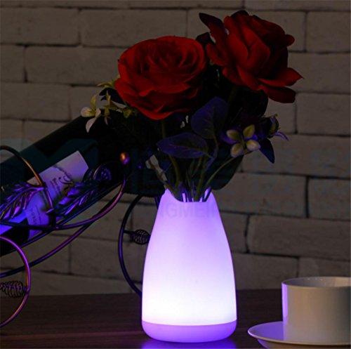 SUGER-LIGHT Bureau Lampe Vase Lumière LED Noël Décoratif Cadeau Intérieur De plein air Table Restaurant À manger Chambre café Boutique Romantique Atmosphère, Rose