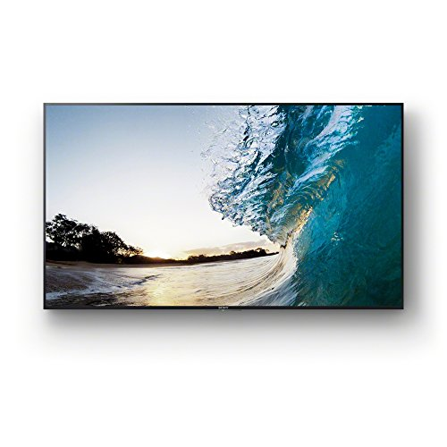 Sony FW-65XE8501 65-Inch 4K HDR Professional BRAVIA TV - Black